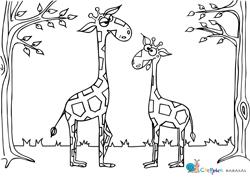 cseppke zsiráfos kifestő, színező
